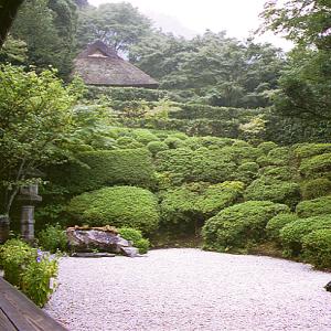 金 福 寺