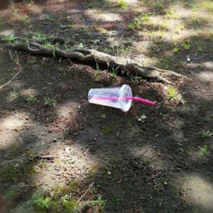 【実証済み】ゴミを拾うと運気があがるのは本当だった