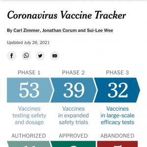 コロナワクチン承認の遅れ