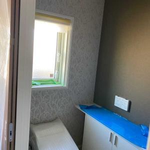 最近の【おトイレ】が壁紙になっている理由って?