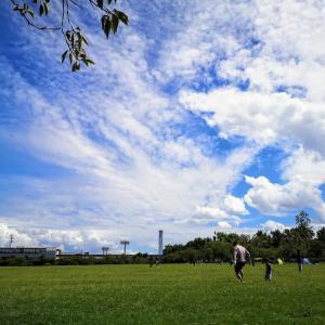 最近のおはぎ家、休日はもっぱら公園でピクニックしています