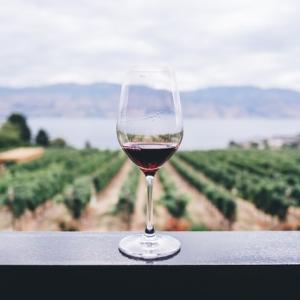 ワイン基礎知識。ワインの味を決める3要素はブドウ品種・ブドウが育つ環境・ワインの作り方!
