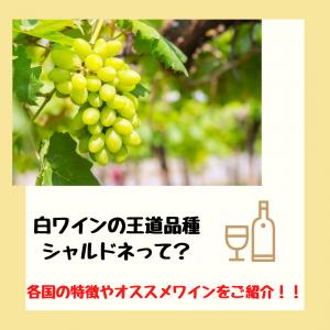 白ワインの王道品種!シャルドネの特徴と国ごとの違い・オススメワインを紹介