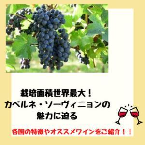 栽培面積最大の大人気黒ブドウ品種            カベルネ・ソーヴィニョンの特徴と国ごとの違い・オススメワインを紹介