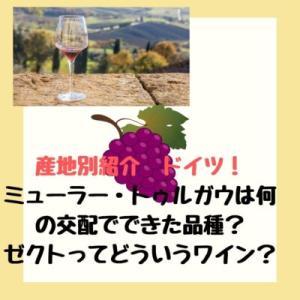 産地別ワイン試験(ワインエキスパート/WSET)対策 ドイツ 品種・産地
