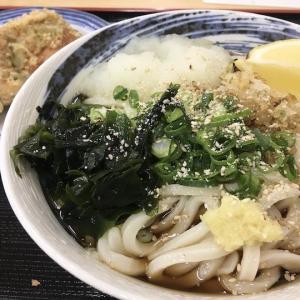うどん一福(いっぷく)のメニューや各店舗情報まとめ【コシのある細麺が美味しい】