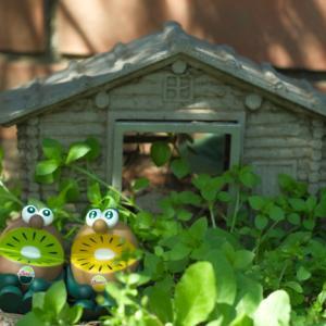 野中の一軒家