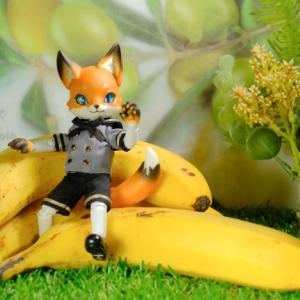 バナナと戯れるKonちゃん