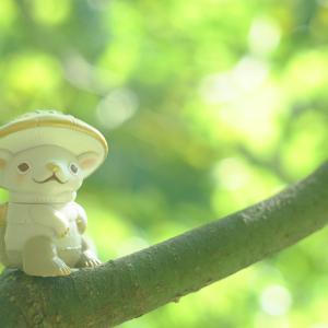 木の枝で、ひと休み