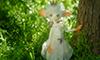 森の中の白い猫妖精さん