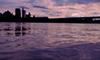 黄昏、多摩川、紫