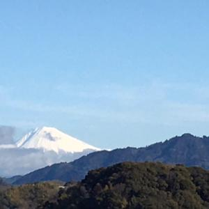 今朝のウォーキングと、富士山雪化粧
