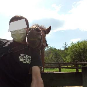 ツーリングレポート~心の癒しを求めて、木曽馬との交流~