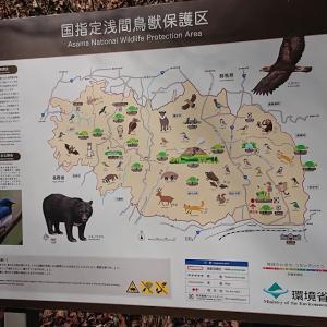 野生生物との共生のために~軽井沢の取り組み