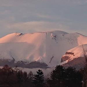 雪景色を堪能
