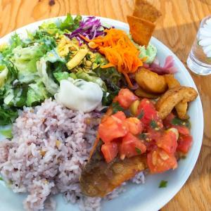 Pokke dish(ポッケディッシュ)でランチ☆度肝を抜かれたポタージュ形態