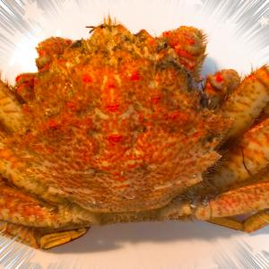 「クロマグロ専門工房 鮪斗」で蟹とマグロをgetしました