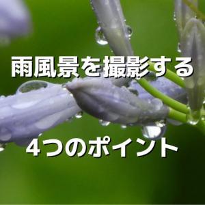 雨を表現する画像の撮り方