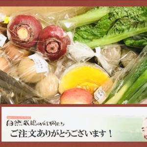 野菜セット・取り寄せのメリットをご紹介!自然栽培の仲間たち2回目!