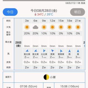 【釣行記】2020/8/28 テンヤタチウオ 小川丸