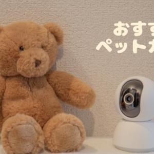 【飼い主必見】ラクラク操作おすすめペットカメラ!【スマホで操作可能】
