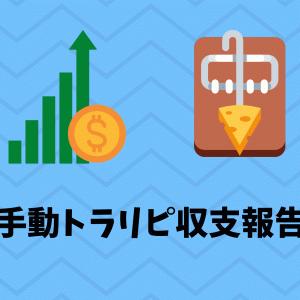 手動トラリピ収支報告 ~5か月目~