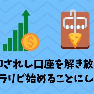 手動トラリピ収支報告 ~3か月目~