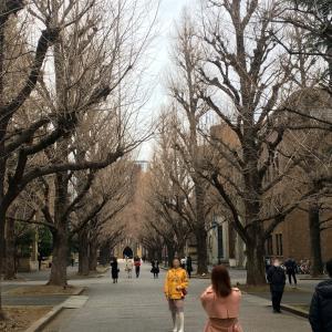 『ラブひな』東大本郷キャンパス巡礼
