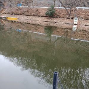 本日円良田湖