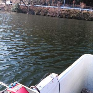 本日も円良田湖へ