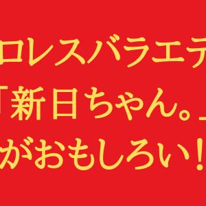プロレスバラエティ「新日ちゃん。」がおもしろい!