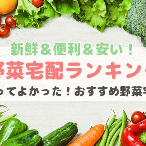 野菜宅配おすすめランキング【おいしい・安全・安い野菜通販比較!オーガニック・有機・無農薬】