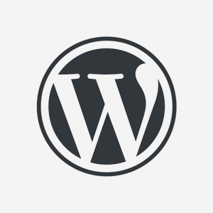 WordPressでIllegal string offsetのWarning