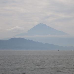 6月12日 投げ五目釣りとタナゴ釣り