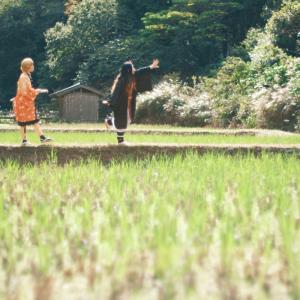 秋の日を歩く