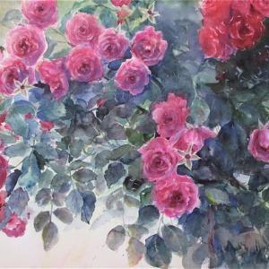 水彩画過去の薔薇たち