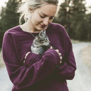改正 動物愛護管理法/子犬・子猫の社会化期とマイクロチップの義務化