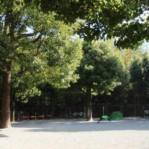 神奈川県平塚市にある ドッグフォレスト湘南 木村植物園