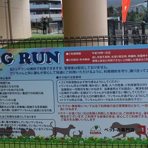 神奈川県相模原市にある ペットのコジマ アリオ橋本店 ドッグラン