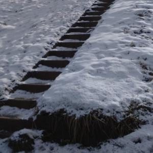 雪が残る階段の向こう
