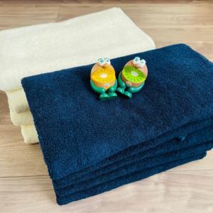 新年を気持ち良く迎えるためにタオルを総入れ替え。『タオル研究所』のタオルを買いました♪