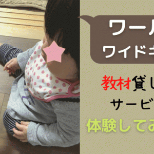 【無料教材貸し出し】ワールドワイドキッズ のお試しを1歳児が体験
