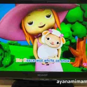 英語DVDリトルベイビーバムの口コミ•評判!1歳5歳に見せてみた感想