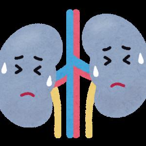 腎臓が悪いってどういうこと?