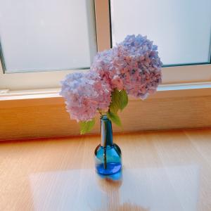 【お花のある暮らし】お花を飾る理由と紫陽花に元気をもらえた話。