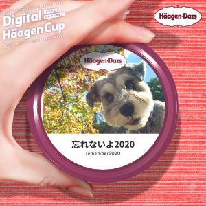 好きな写真でパッケージを。デジタルハーゲンカップに挑戦!