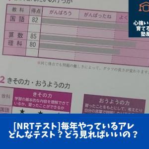 【NRTテスト】例のピンクの紙、返ってきたけど、どう見ればいい?評価のナゾ