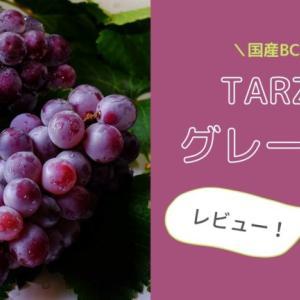国産BCAA「TARZA」のグレープ味を飲んだよ!|レビュー