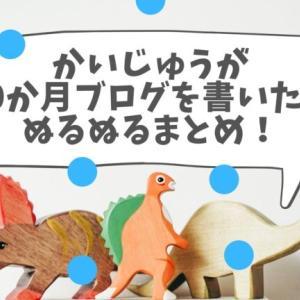 【祝10か月!】かいじゅうが十か月ブログを書いた話ぬるぬるまとめ