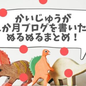 【祝11か月!】かいじゅうが十一か月ブログを書いた話ぬるぬるまとめ